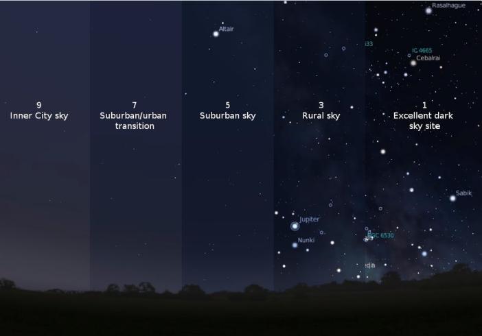 Bintang di Waktu Malam